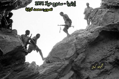 kahals photos (5)