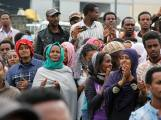eritrean demo addis 26 june 2015-(2)