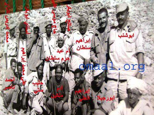mohammed hesas