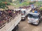 تم نقل الاسرى عبر مركبات متوسطة الحجم الى حدود اقليم الامهرا